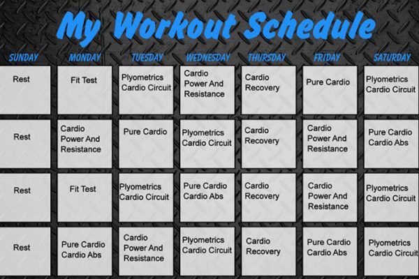 Insanity Workout Schedule 1