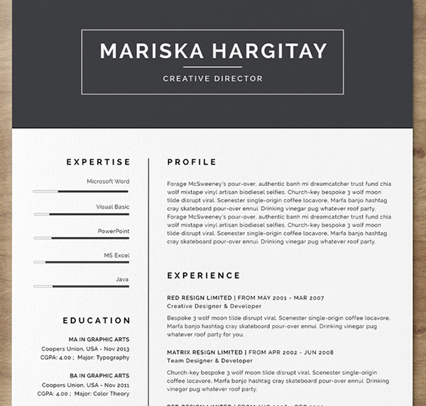 indesign resume template 5