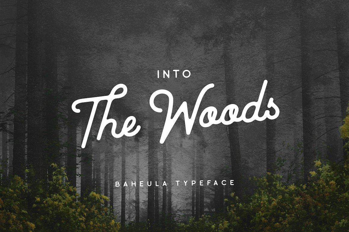 Baheula Vintage + Clean Typeface