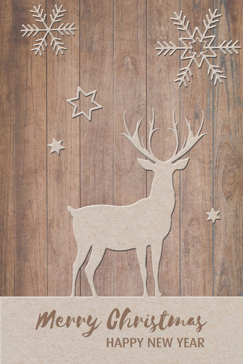 christmas deer with snowflakes