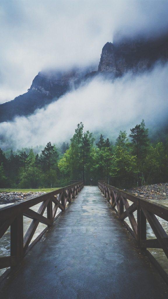 forest-river-fog