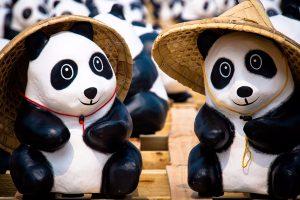 free panda wallpapers