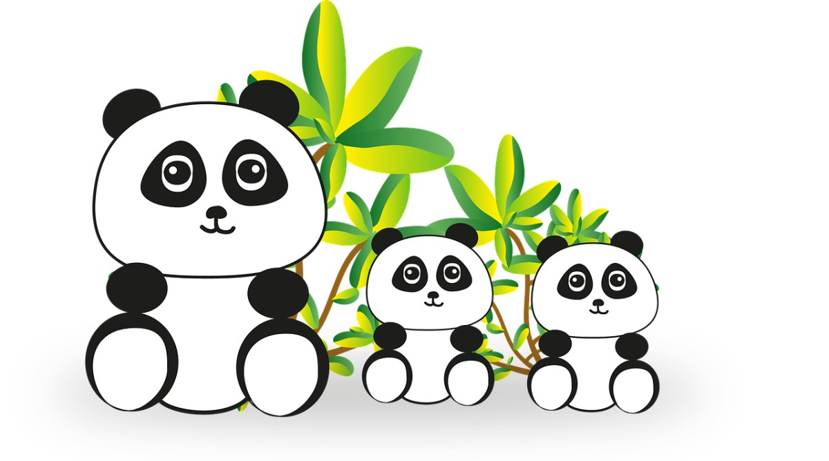 Family Panda Image