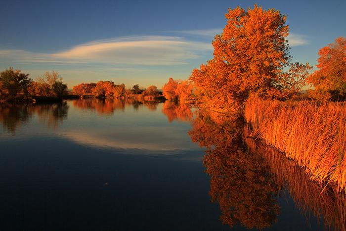 red-lake
