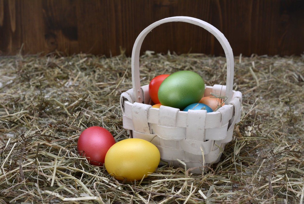 basket colorful decoration eggs