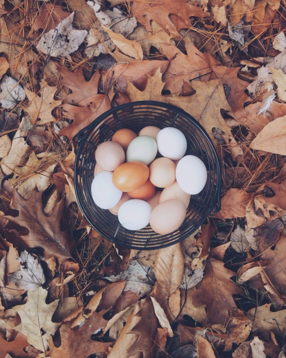 Basket with Brown Eggs