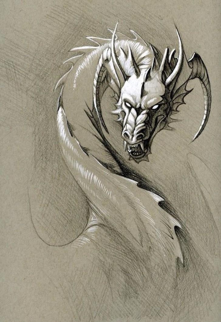 Dragon Angry