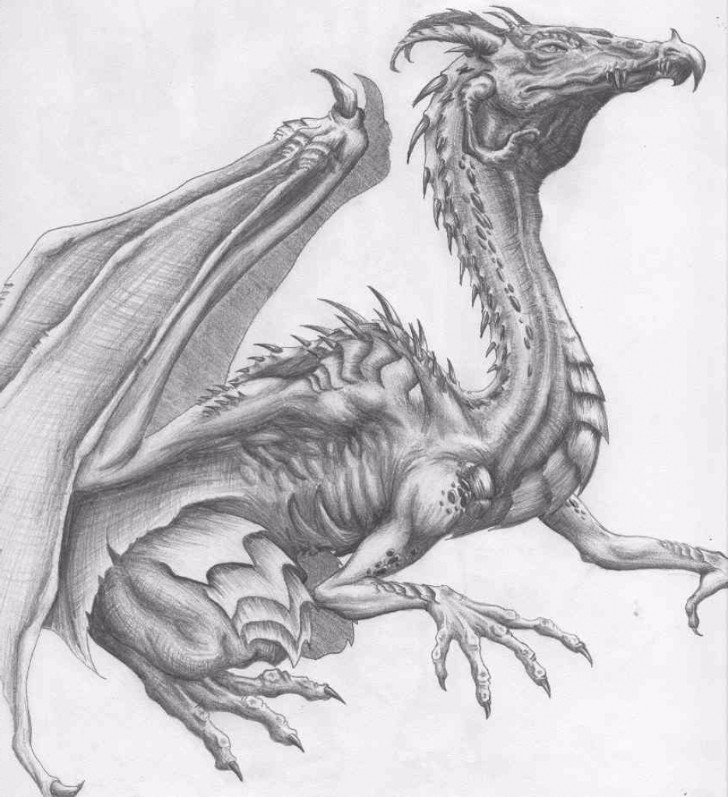 Dragon Drawing Pencil
