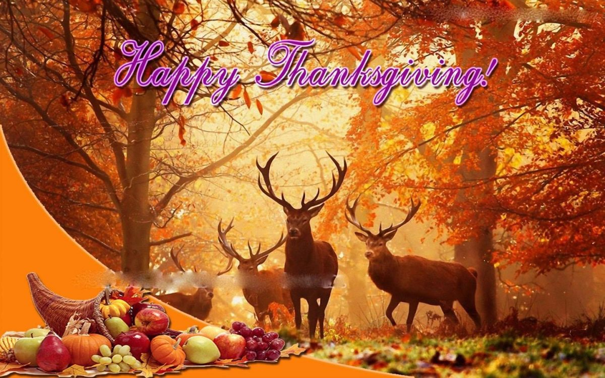happy thanksgiving with deer