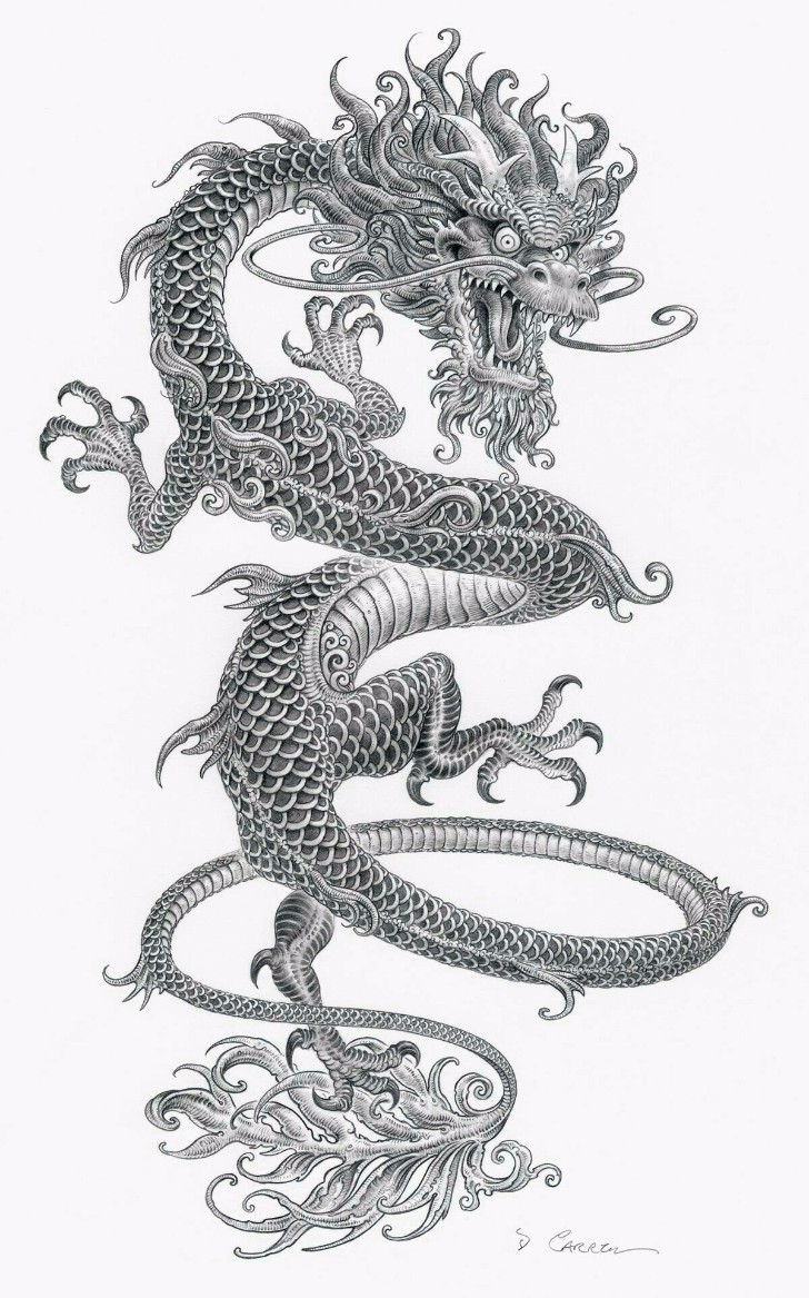nice dragon drawing