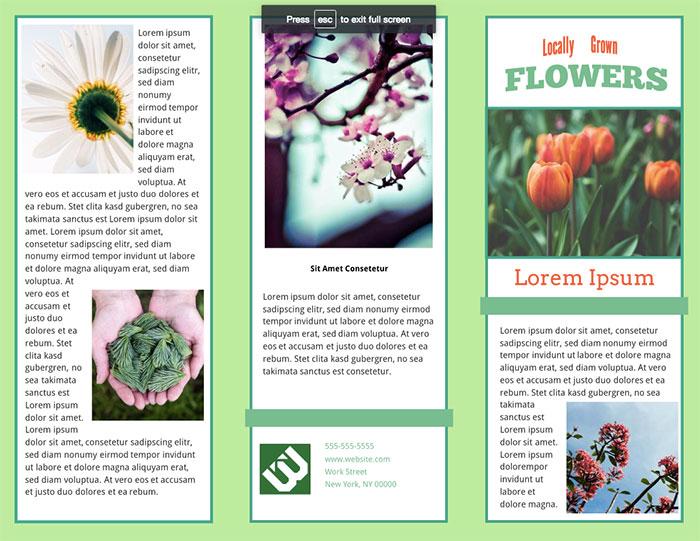 perennial-tri-fold-brochure-template
