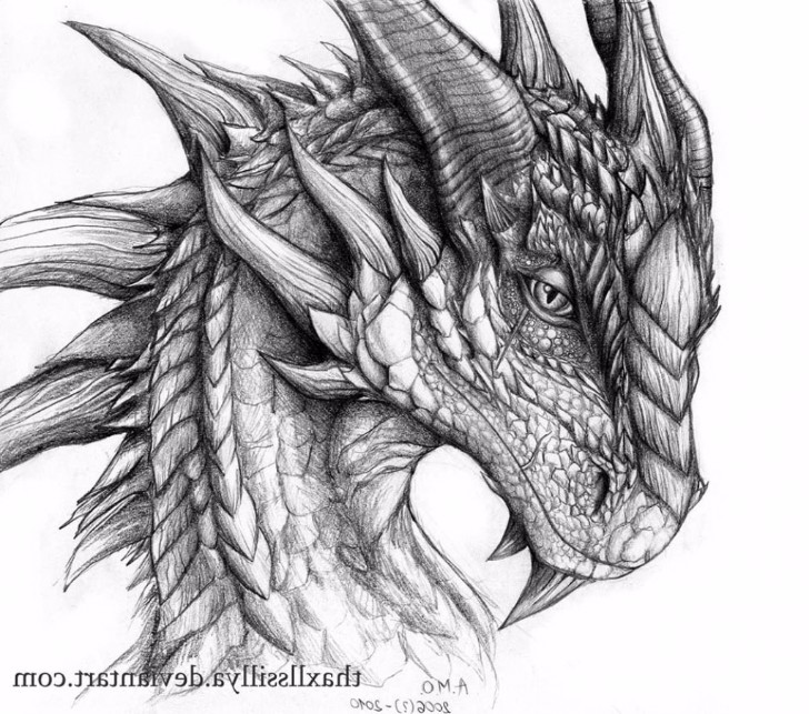 realistic dragon head drawing