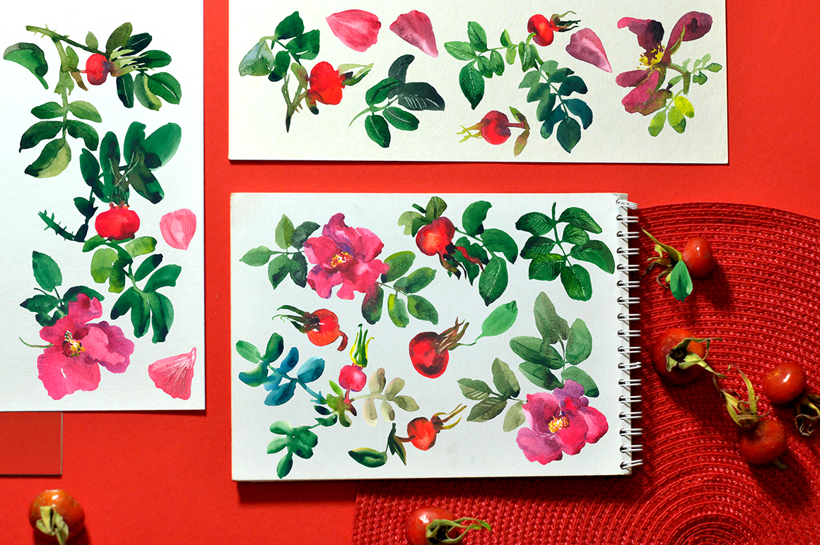 Rosehip Floral Abstract Watercolor Set