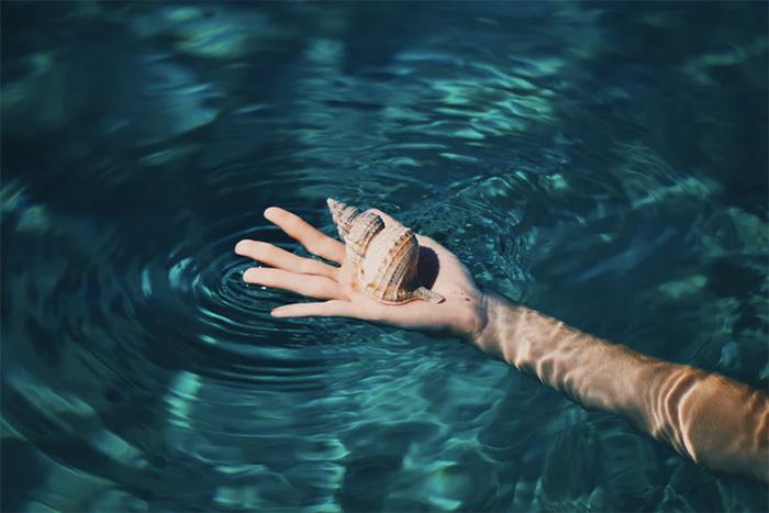 shell-hand