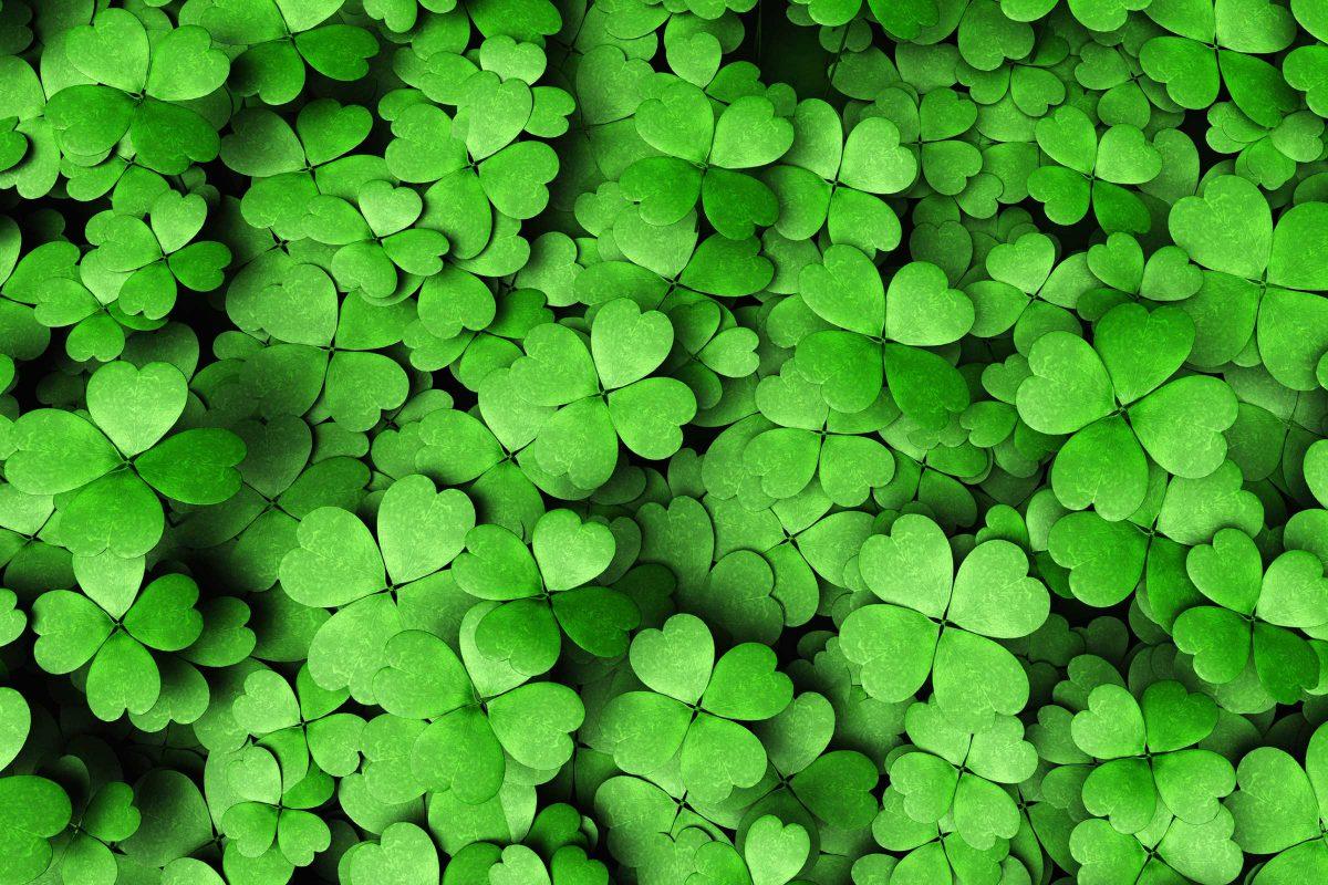st patrick leaf image