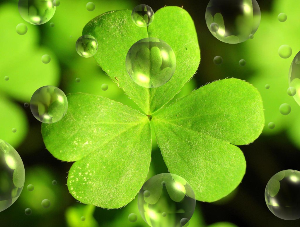 St Patrick Leaf