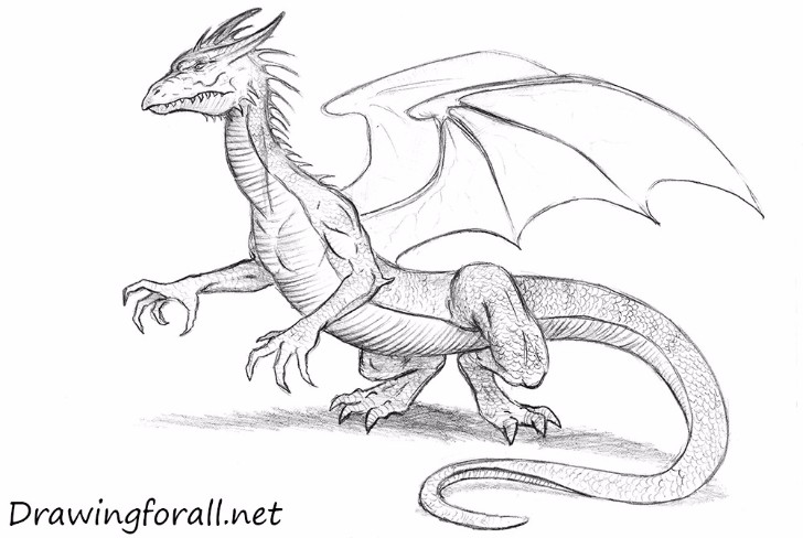 STEP BY step drawing DRAgon
