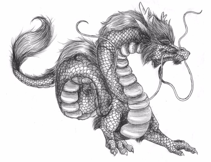 The Chinese Dragon Google Images