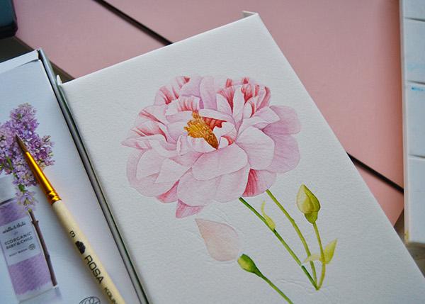Watercolor Vintage rose pattern