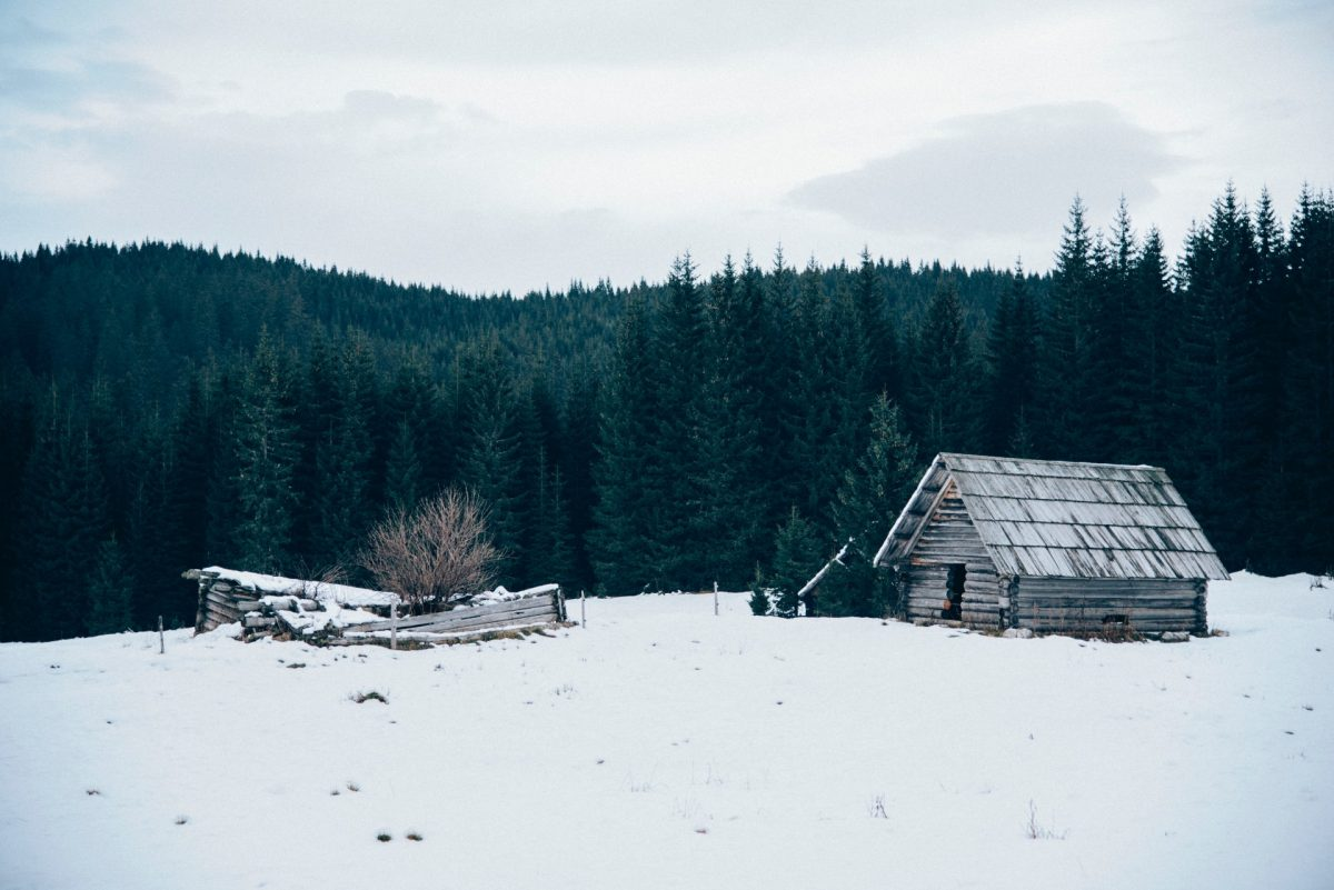 winter backgrounds 03