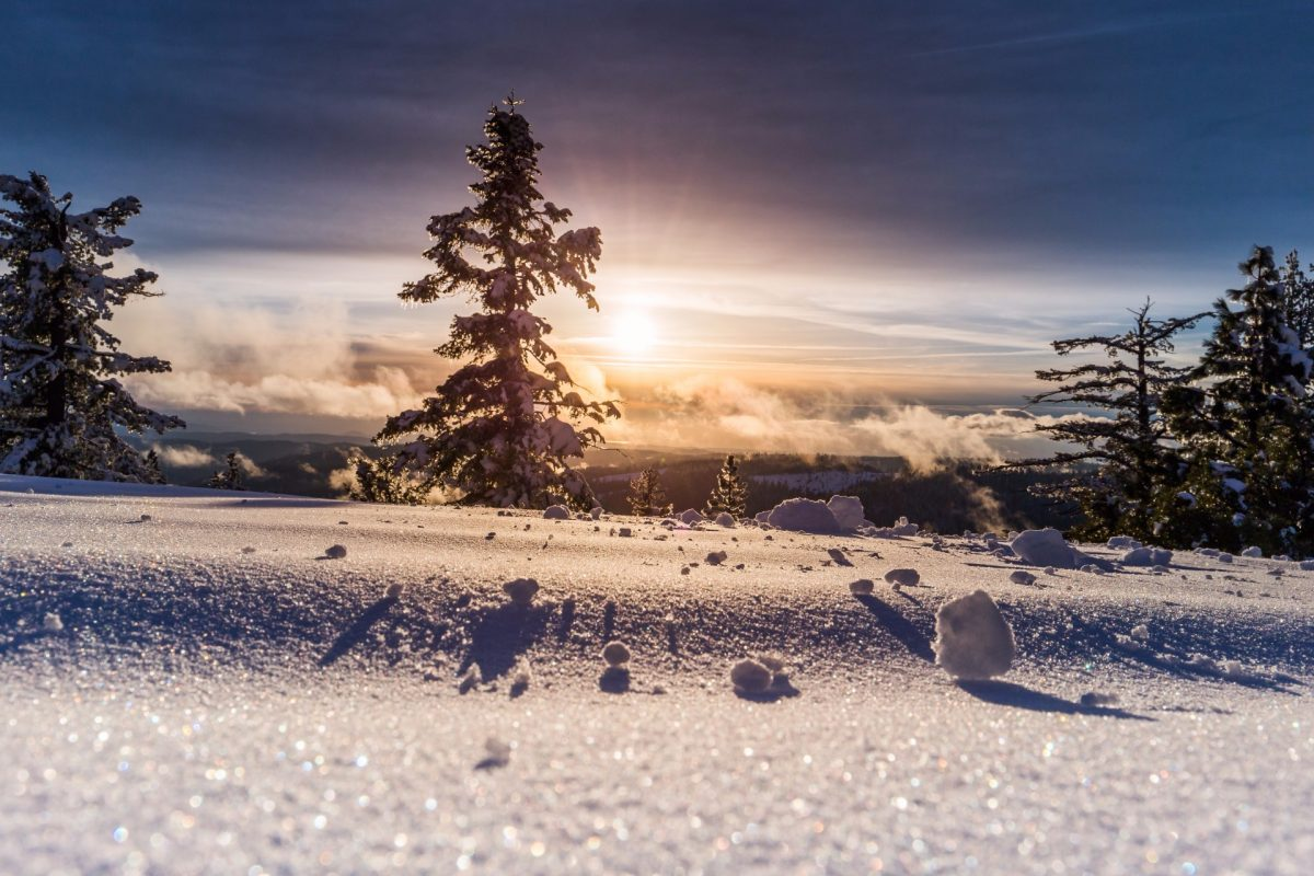 winter backgrounds 14