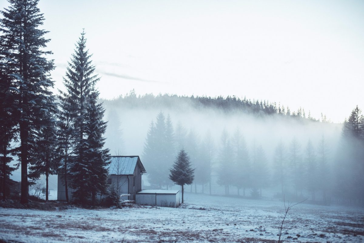 winter backgrounds 26