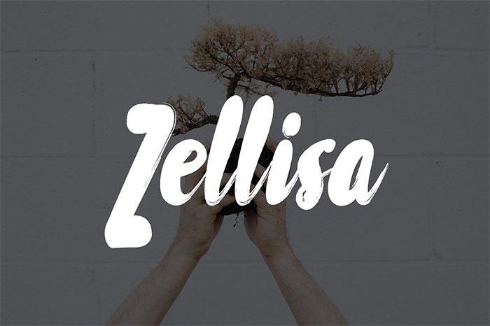 zellisa-google-slides