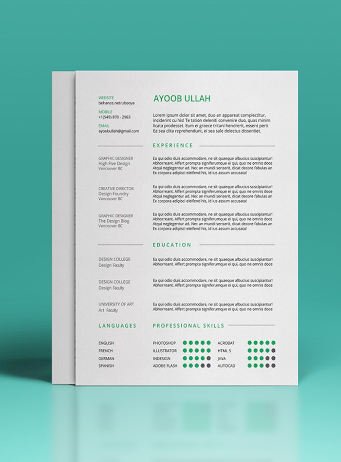 any-industry-resume