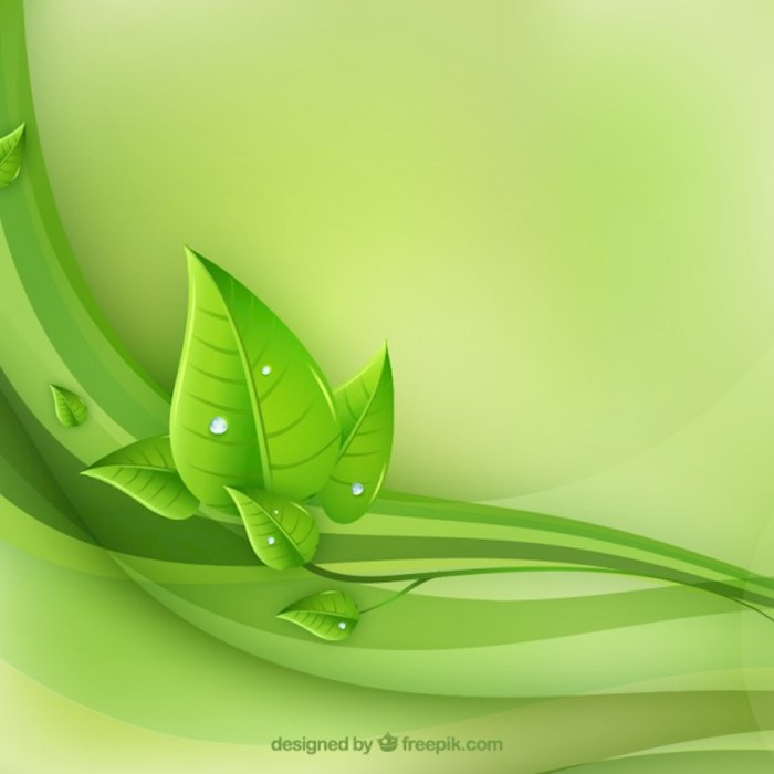 eco-leaves-and-green-waves