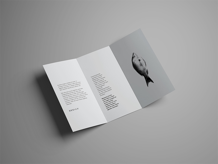 tri-fold-brochure-mockup-bundle