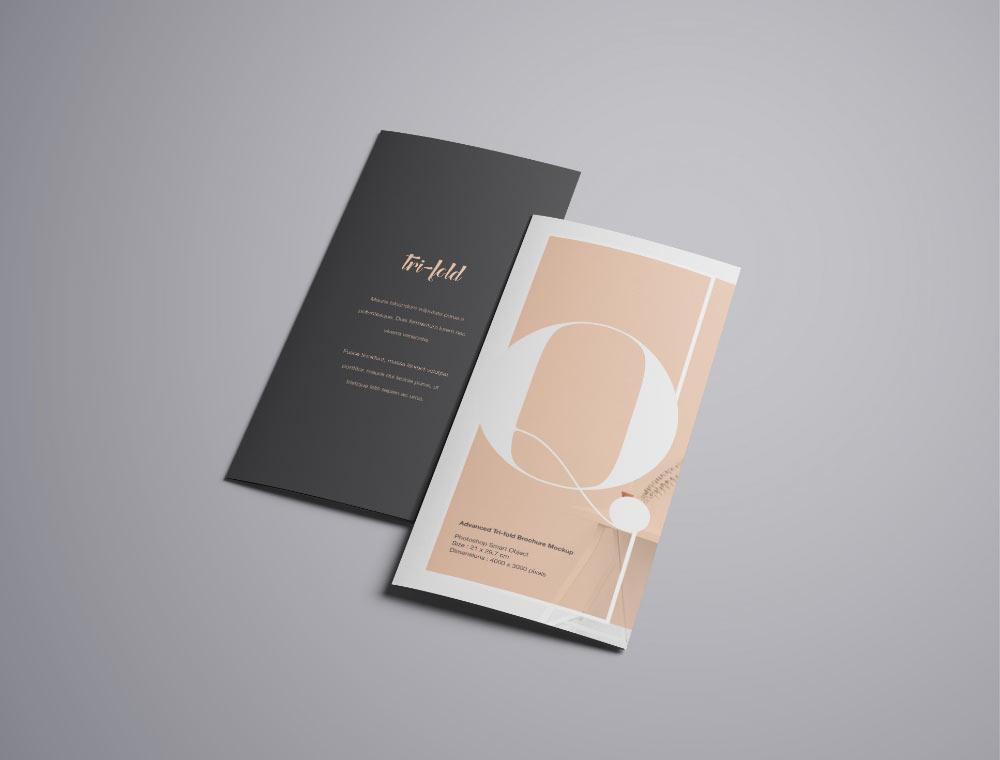 tri folded A4 brochure