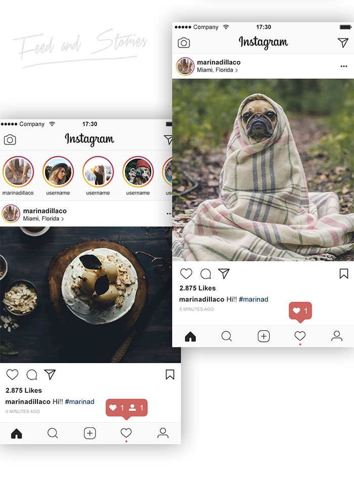ui-preview-instagram-2017-psd