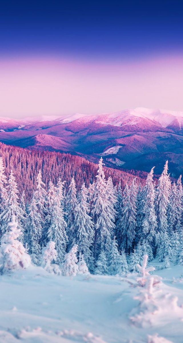 winter iphone wallpaper 1