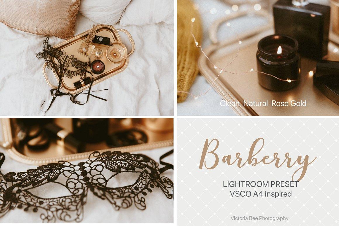 40+ VSCO Lightroom Presets You Will Love - Mashtrelo