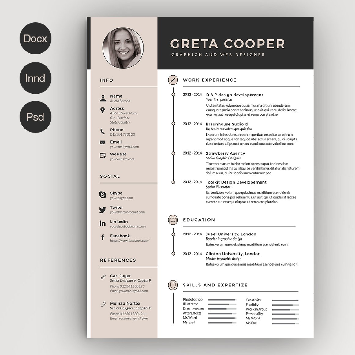 Clean Cv Resume II
