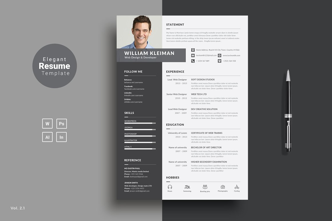 Professional Clean Resume CV