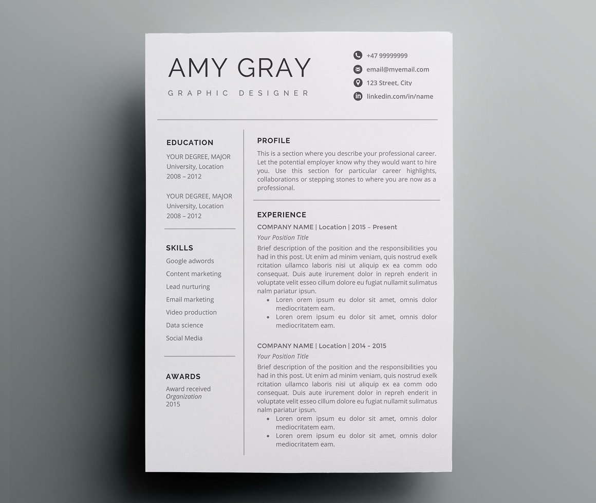 Professional resume template CV