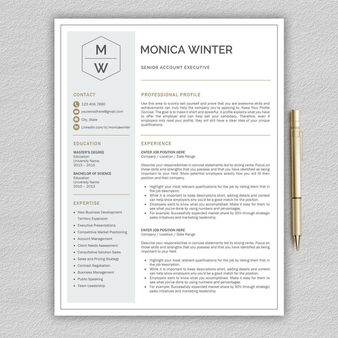 Resume Template Cv Template 1  Concise Resume Template