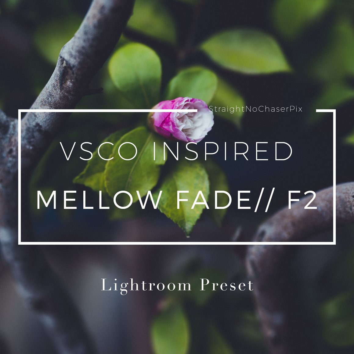VSCOCam F2 inspired Lightroom Preset