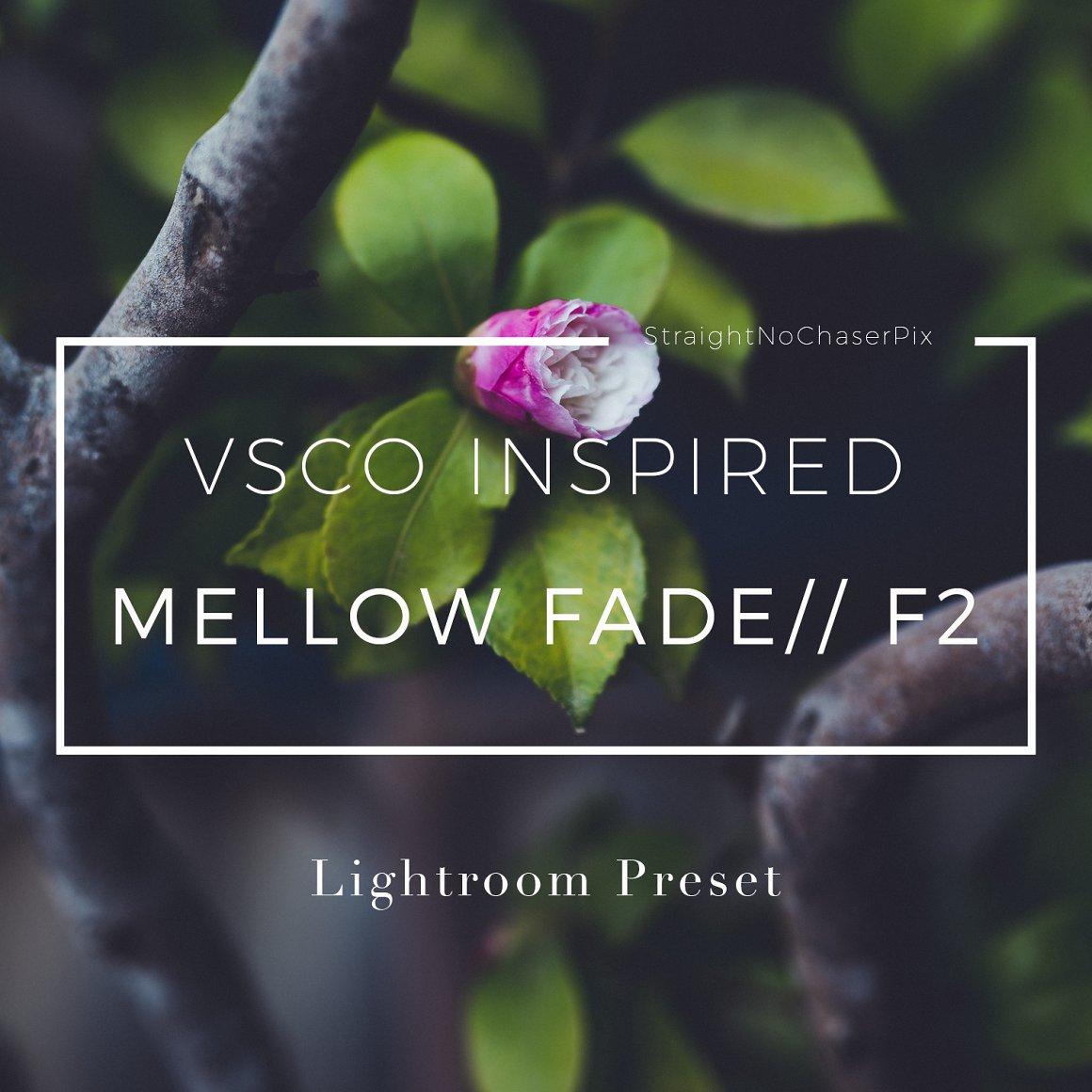 VSCOCam F2 inspired Lightroom Preset