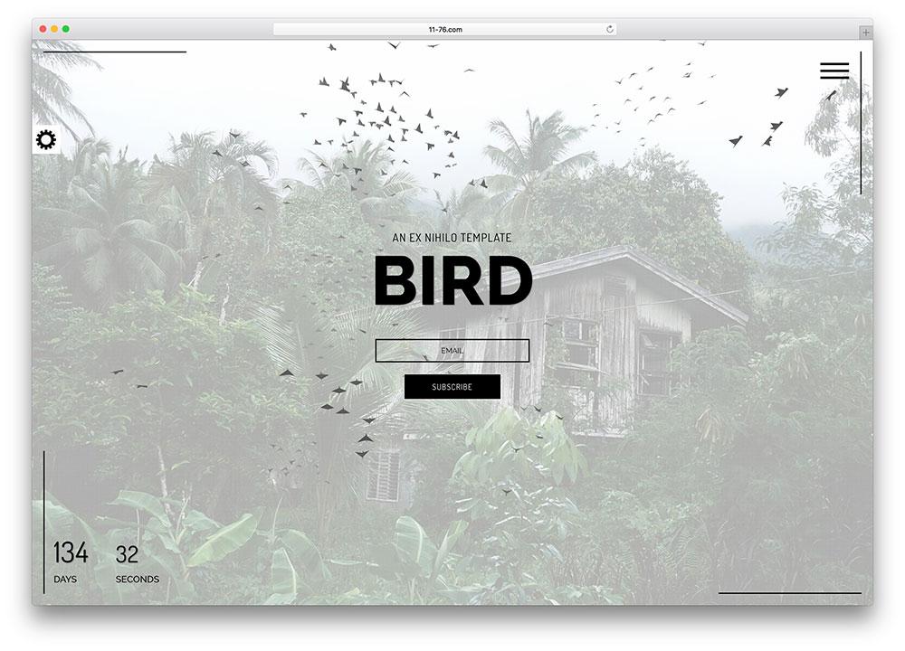 Birdman Responsive Coming Soon Page