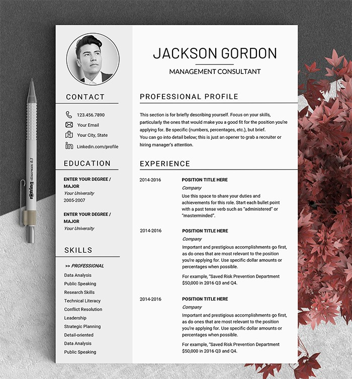 professional-profile-resume