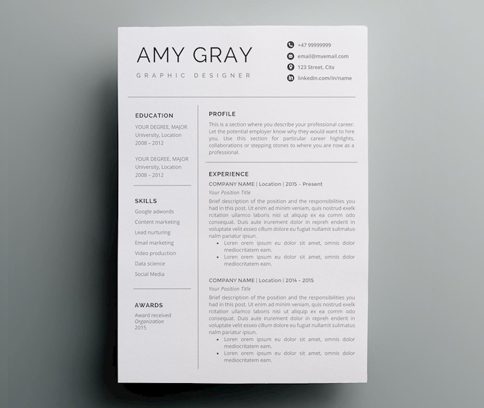 professional-resume-template-cv