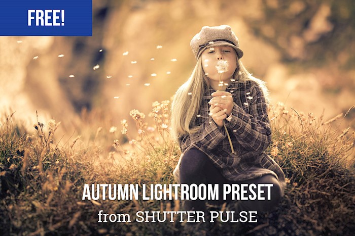 free-autumn-lightroom-preset