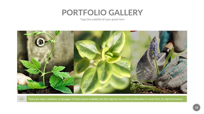 2-ecological-google-slides-presentation-template