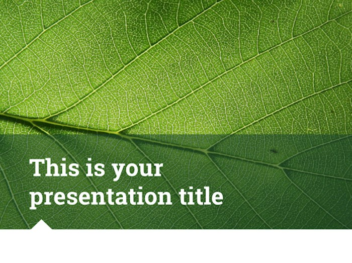 ariel-free-presentation-template