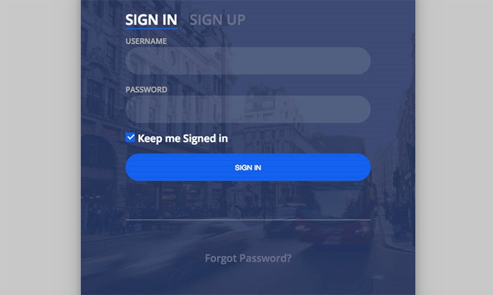 city-login-form
