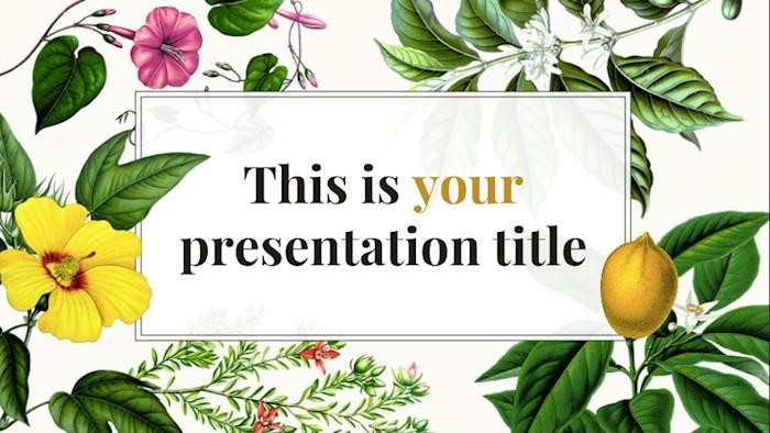 constance-free-presentation-template