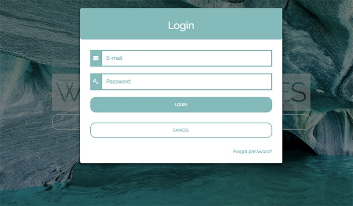 login-form-window