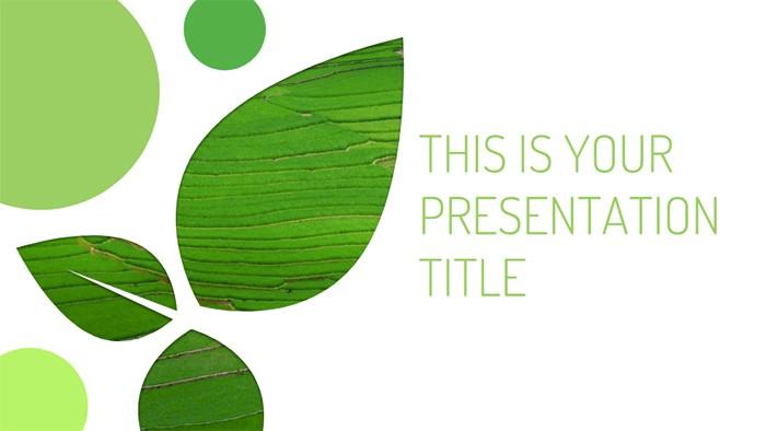 solanio-free-presentation-template